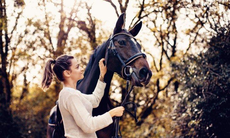 Tails Photographie - Céline Jean Portrait animalier Besançon